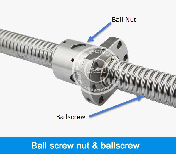 ball screw nut and ball screw